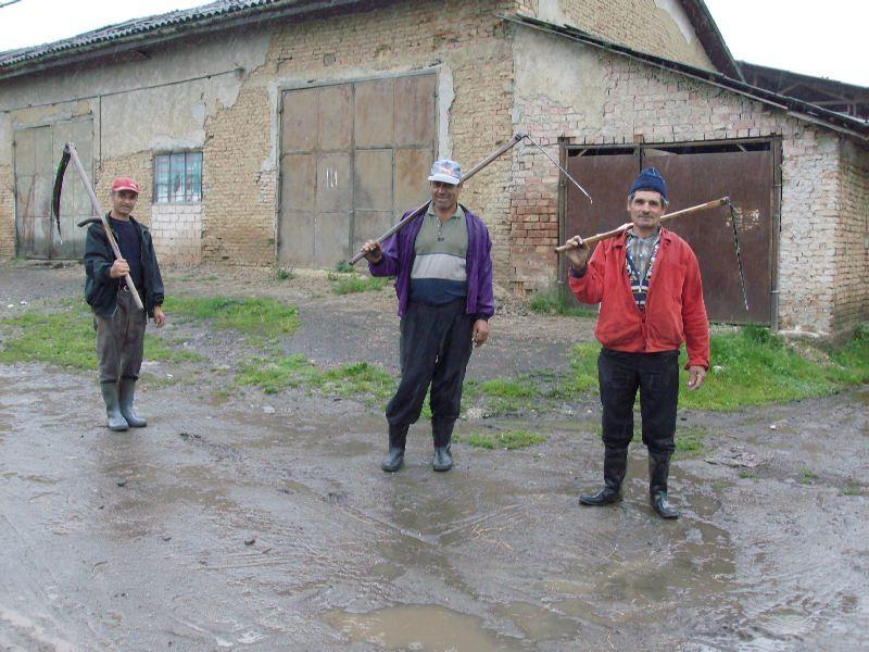 SPS-Talent-Camp-Raciu-2012-0192