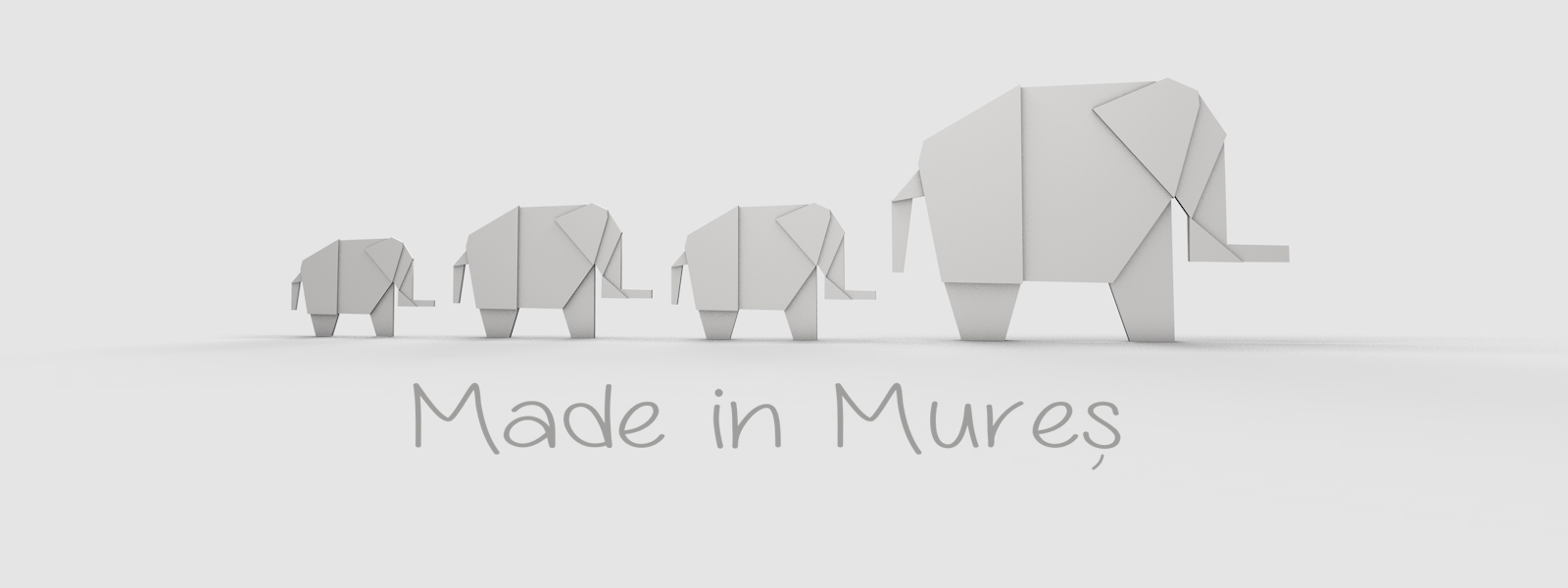 Lansare proiect Made in Mures